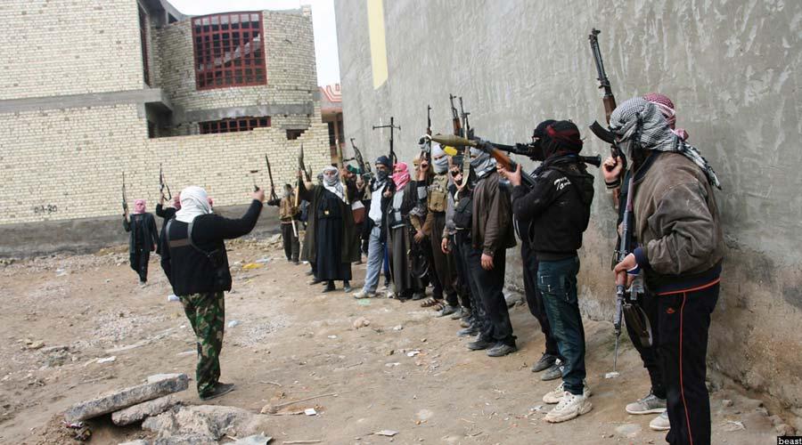 شماری از جنگجویان القاعده