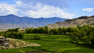 Kabul-Ghazni (9)