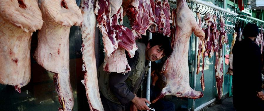 largest importer of meat