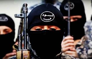 ۲۴ساعت در افغانستان؛ از کشتهشدن ۷۶ تروریست تا نبردهای سنگین درونگروهی داعش-طالبان
