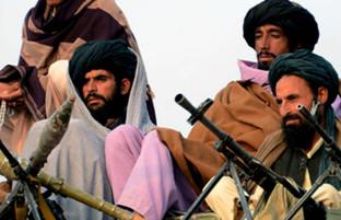 در سراسر افغانستان؛ ۲۰ تروریست کشته شده اند