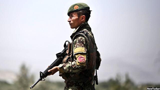 نیروهای امنیتی افغانستان 91 تروریست را در 7 ولایت این کشور کشته اند