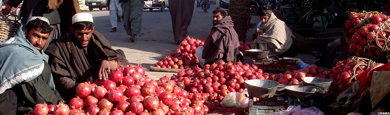 Pomegranate-for-sell