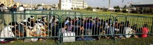 iran-refugees-mainpage