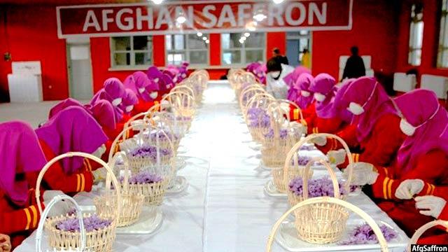 afg-saffron