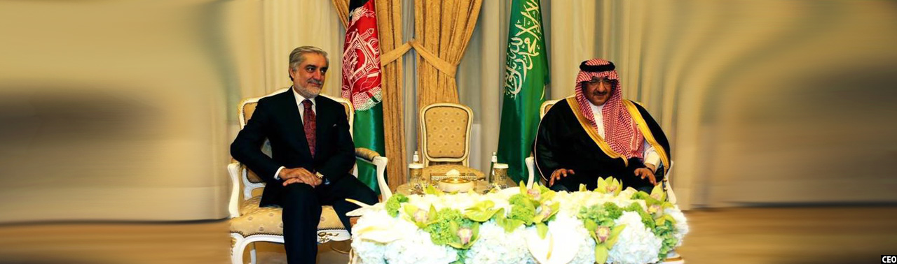 dr-abdullah-abdullah-with-uae-king2
