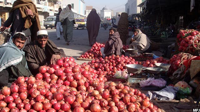 qandahar-pomegranate2