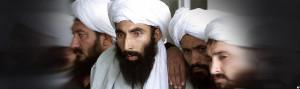حزب اسلامی اعلام کرده که پس از بردار خطاب کردن طالبان، شماری از سران سیاسی این گروه با گلبدین حکمتیار در تماس شده اند