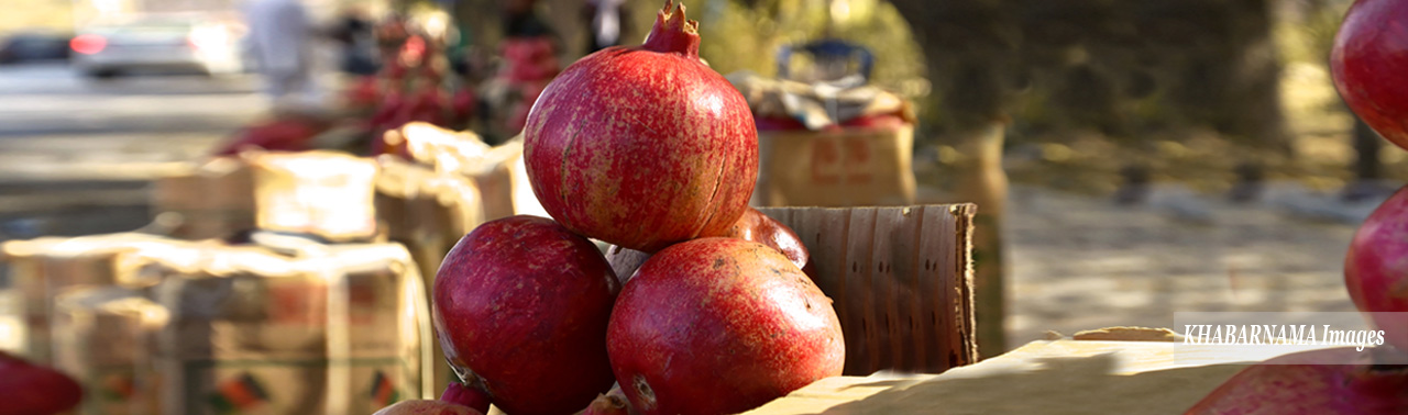 kandahar-pomegranate-market-in-kabul