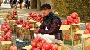 kandahar-pomegranate-market-in-kabul-8