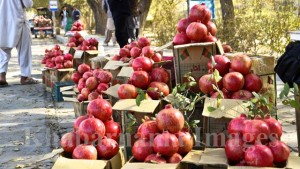 kandahar-pomegranate-market-in-kabul-9
