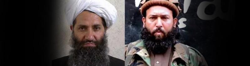 داعش و طالبان؛ ابزار قدرتهای منطقهای