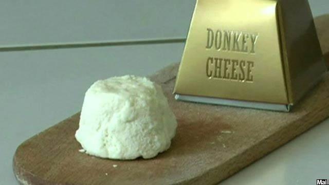 donkey cheese یا همان پنیر خر