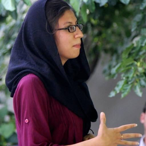خانم اکبر در چندین نهاد های ملی و بین المللی کار کرده است