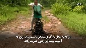 -هندی-که-در-یک-آن-دهها-مار-زهرآگین-و-کشنده-را-در-جنگل-رها-میکند