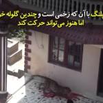 پلنگی که در نیپال وارد خانه مسکونی شده و یک محله را به وحشت انداخته