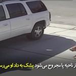 کودکی که از سوی سگ مورد حمله قرار می گیرد