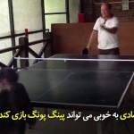 شادی (میمون) که همانند ورزشکاران ماهر، پینگ پانگ (تنیس روی میز) بازی میکند