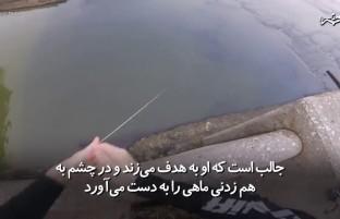 ماهی گیری به سبک تیراندازی