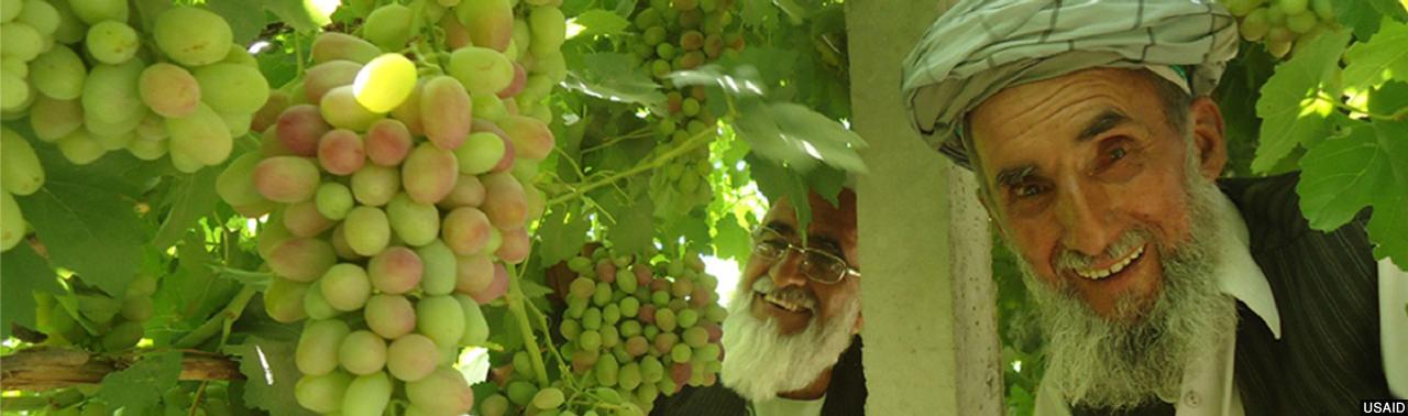 آب و توسعه پایدار؛ کشور کشاورزی، رفع نگرانیهای منطقهای و بازتعریف ارزش آب در افغانستان