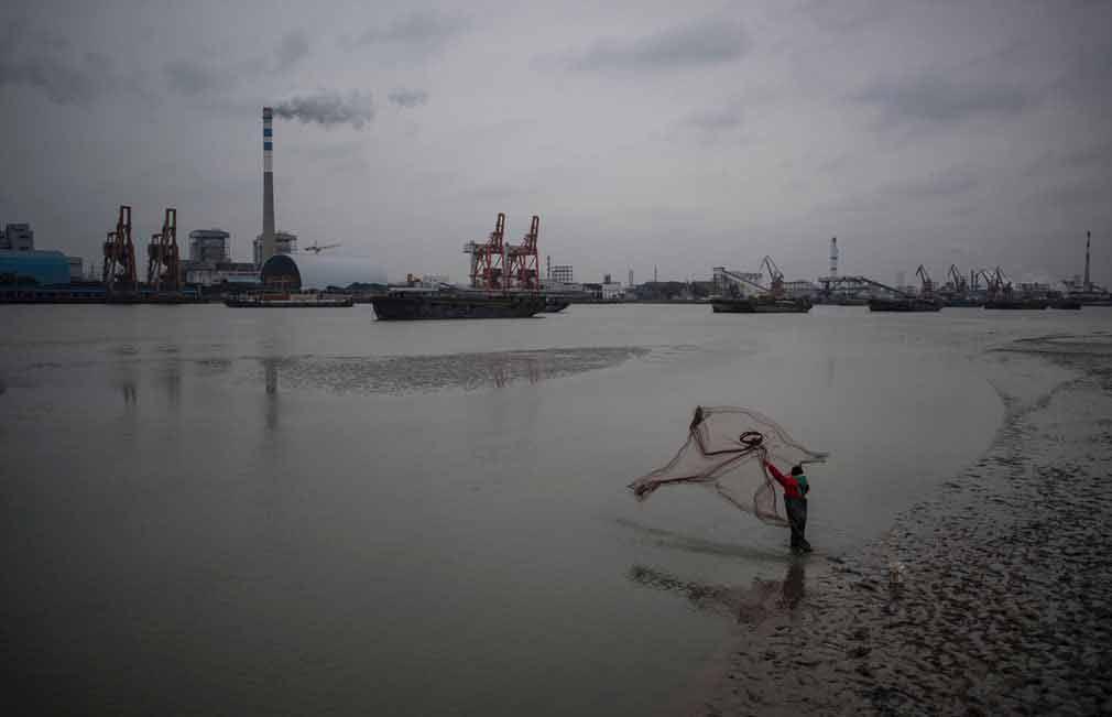 مرد چینی در حال ماهی گیری در شانگهای چین. تصویر از AFP