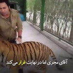 به حیوانات وحشی هیچ وقت نمیشود اعتماد کرد