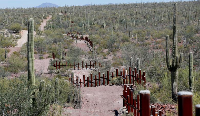 مرز ایالات متحدهی آمریکا با مکزیک. اطراف این مرز به صورت وسیع کاکتوس کاشته شده است تا مانع عبور غیر قانونی از آن شود / عکس: رویترز