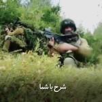 نظم در عملیاتهای نیروهای ویژهی نظامی