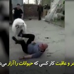 پاداش کار کسی که حیوانات را ازار میدهد