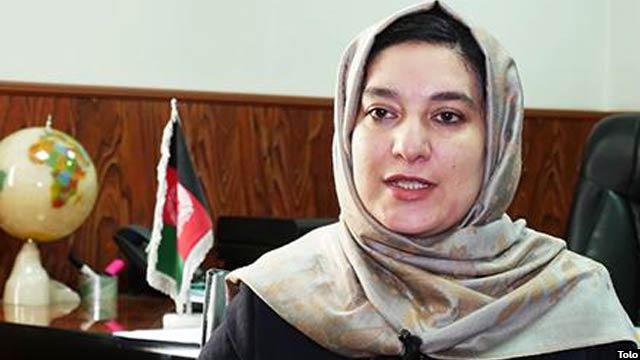 وسیمه بادغیسی، معاون عملیاتی کمیسیون مستقل انتخابات افغانستان