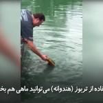 روش جالب ماهیگیری با استفاده ازتربوز