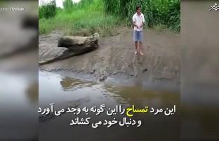 مردی که تمساح را به وجد میآورد