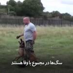 سگ آموزش دیده، اینگونه از صاحبش دفاع میکند