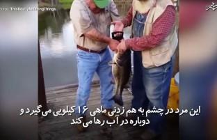 پیرمردی که در چشم به هم زدنی ماهی ۱۶ کیلوگرامی را صید میکند