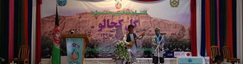 جشنواره گل کچالو؛ بامیان خلاق این بار با کچالو خود را به نمایش گذاشت