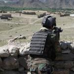 از هرات تا بدخشان؛ 55 شورشی در 12 ولایت افغانستان کشته شدند