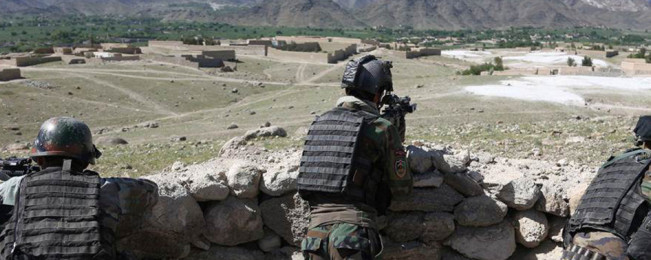 از هرات تا بدخشان؛ ۵۵ شورشی در ۱۲ ولایت افغانستان کشته شدند