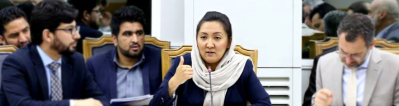 بروکرات تاثیرگذار؛ ناهید سرابی و الگوی از رشد متفاوت در بروکراسی حکومتی افغانستان