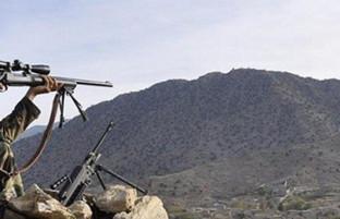 در سراسر افغانستان؛ کشته شدن ۲۹ شورشی در ولایتهای مختلف