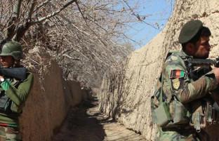 در سراسر افغانستان؛ کشته شدن ۵۳ شورشی در ولایتهای مختلف
