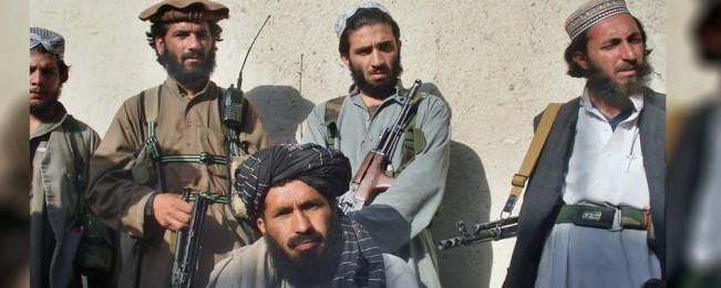 درسراسر افغانستان؛ نابودی ۷۷ جنگجوی طالب و داعش