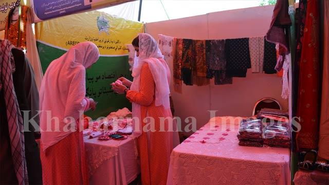 exhibition (14)