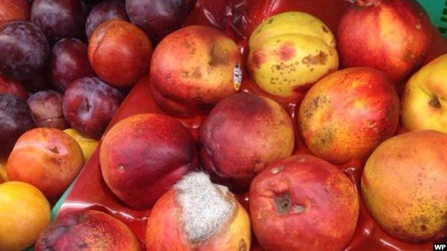 rotten-fruits1