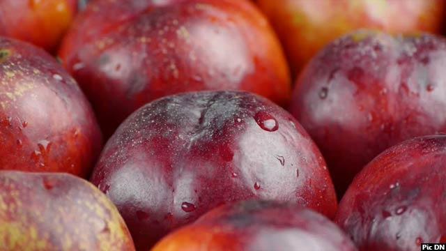 rotten-fruits2