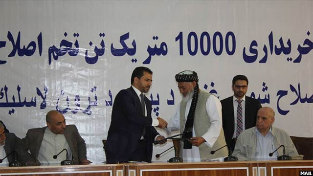 afghanistan-wheat5