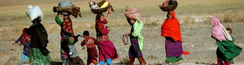 روایت تکاندهنده از محرومیت؛ آمارهای جدید از فقر، سوء تغذیه و زندگی دشوار در دایکندی