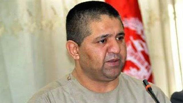 لالی حمیدزی، عضو مجلس نمایندهگان