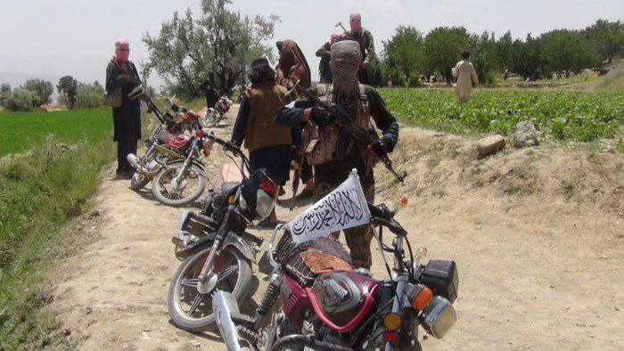 در شهرستانهای ینگی قلعه، دشت قلعه و خواجه بهاءالدین 50 درصد ساحات به دست طالبان میباشد
