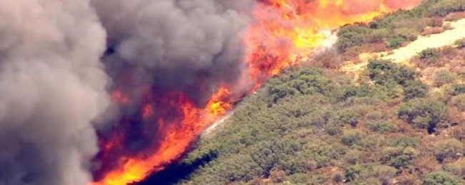 ۱۹۴ کیلومتر تخریب و ۳۸ هزار بیجا شده؛ روایت تصویری از آتشسوزی کالیفرنیا