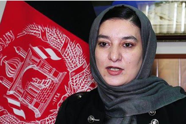 وسیمه بادغیسی، معاون عملیاتی کمیسیون مستقل انتخابات